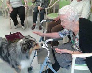 vieille dame et chien